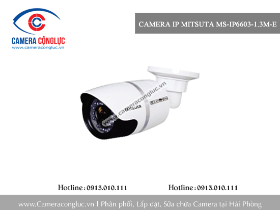 Camera IP Mitsuta MS-IP6603-1.3M-E