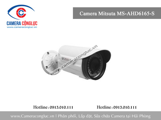 Camera Mitsuta MS-AHD6165-S