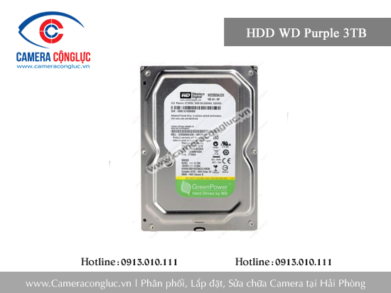 Ổ cứng HDD WD  Purple 3TB